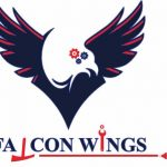 Falcon Wings