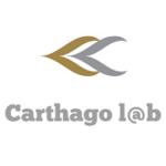 Carthagolab