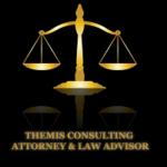 Themis consulting