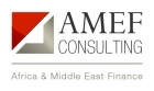 AMEF Consulting recrute un Consultant en finance inclusive