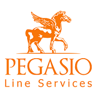 Pegasio International