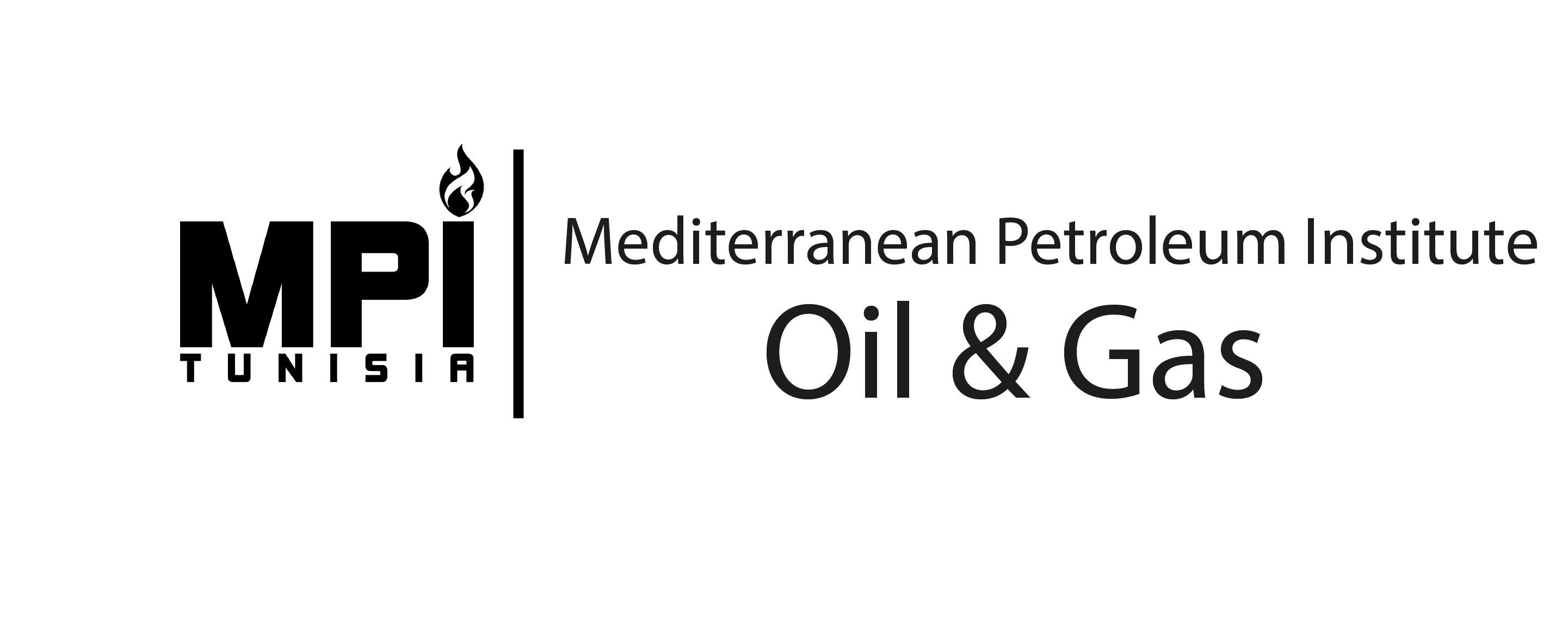 Mediterranean Petroleum Institute