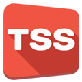 Top securité service (TSS)
