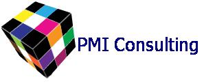 PMI Consulting